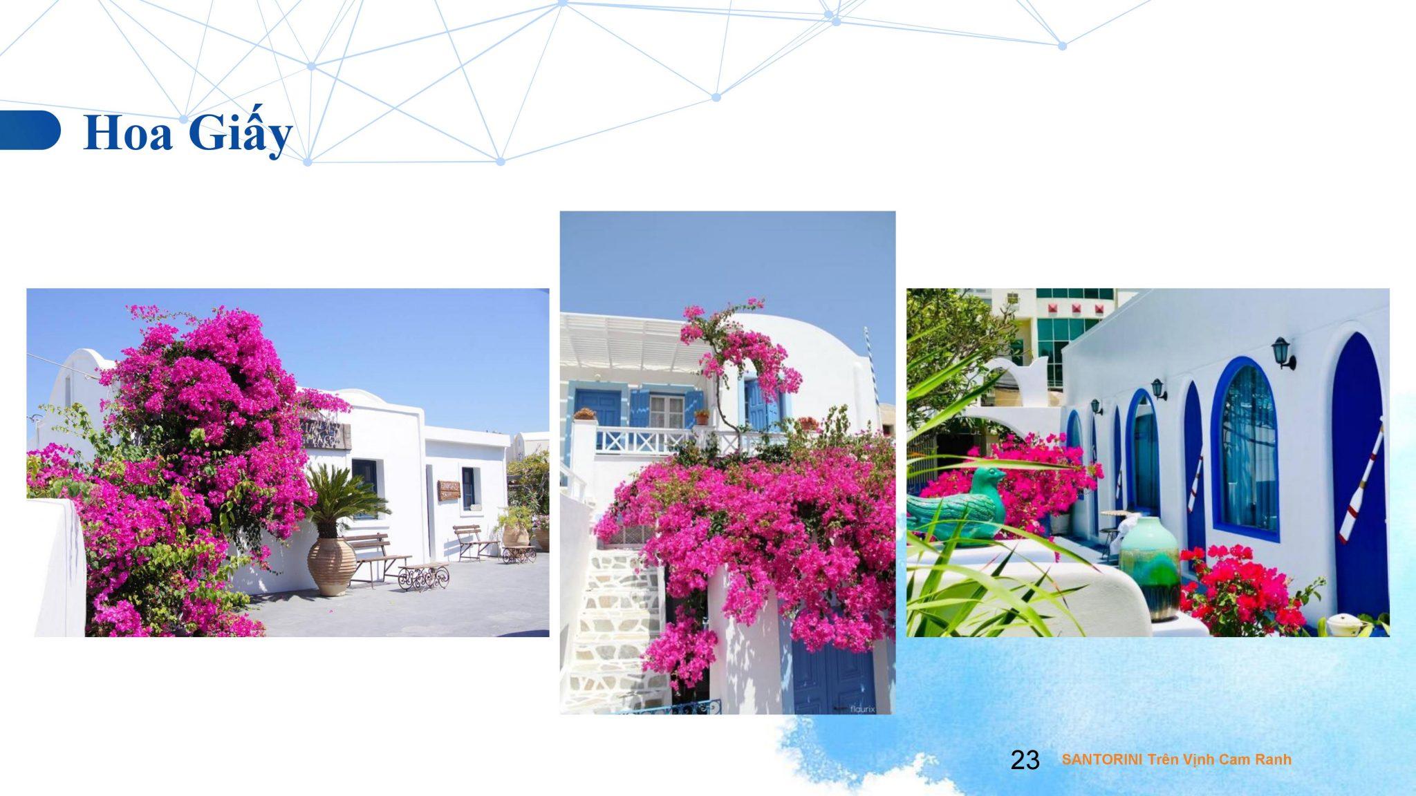 0023 - Dự án căn hộ condotel Cam Ranh Bay - Pearl Cam Ranh